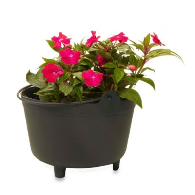 Black Plastic Kettle Planter in 15-Inch H