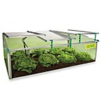BioStar Premium Cold-Frame 8mm Mini Greenhouse