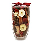 Nature's Inspirations Glass Vase Potpourri in Cinnamon Apple