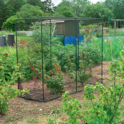 Gardman Fruit Cage in Medium