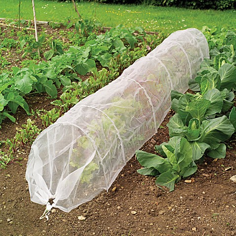 Gardman Insect Mesh Grow Tunnel