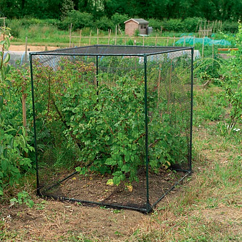 Gardman Fruit Cage in Small