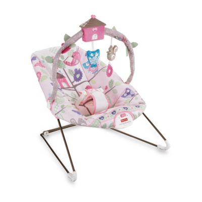 "Cozy Cocoon ""Home Sweet Home"" Bouncer"