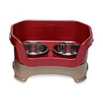 Neater Feeder® Mess-Proof Cat Bowl in Cranberry