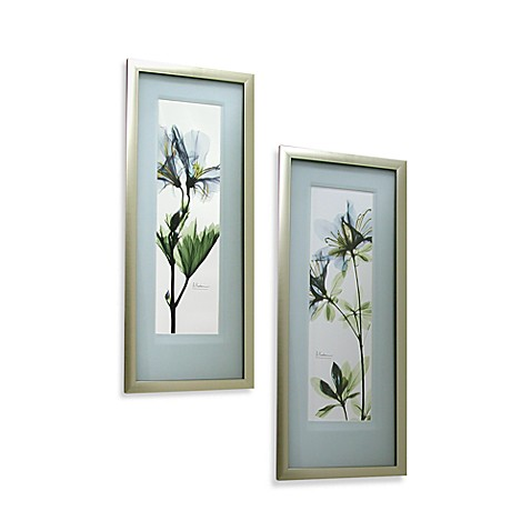 X Ray Blue Floral Wall Art Bed Bath Beyond