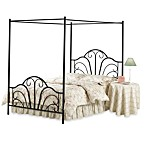 Hillsdale Dover Canopy Bed with Rails in Black Metal