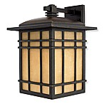 Quoizel® Hillcrest Small Outdoor Hanging Lantern in Bronze Finish