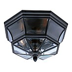 Elegant Newberry Outdoor Light