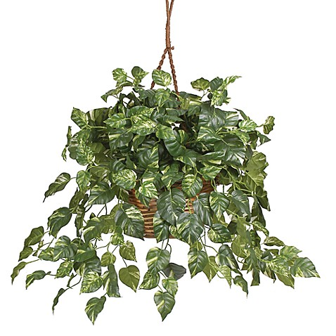 Nearly Natural Pothos Silk Plant Hanging Basket