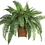 Nearly Natural Boston Fern Silk Plant with Wicker Basket