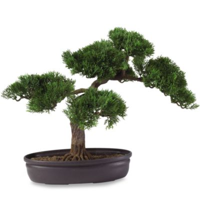 Nearly Natural 16-Inch Cedar Bonsai Tree