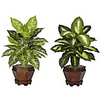Nearly Natural Silk Dieffenbachia Plant w/Wood Vase (Set of 2)