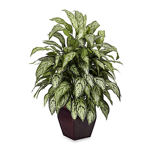 Nearly Natural Silk Silver Queen Plant w/Decorative Planter