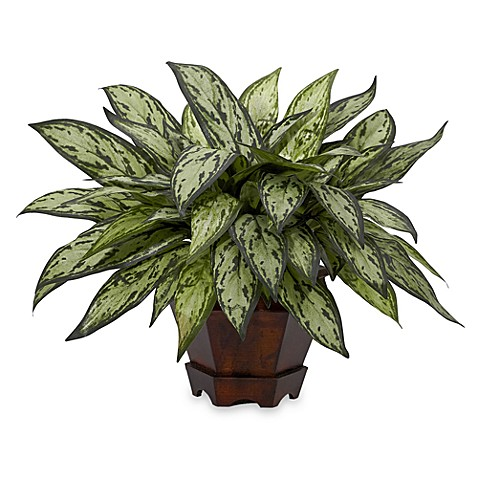 Nearly Natural Silk Triple Silver Queen Plant w/Hexagon Planter