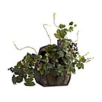 Nearly Natural 20-Inch Grape Leaf Silk Plant with Decorative Chest