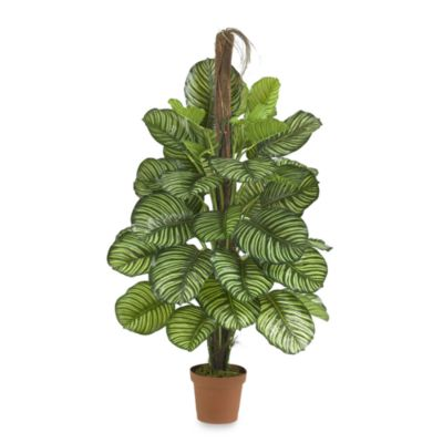 Nearly Natural Real Touch 52-Inch Silk Calathea Plant