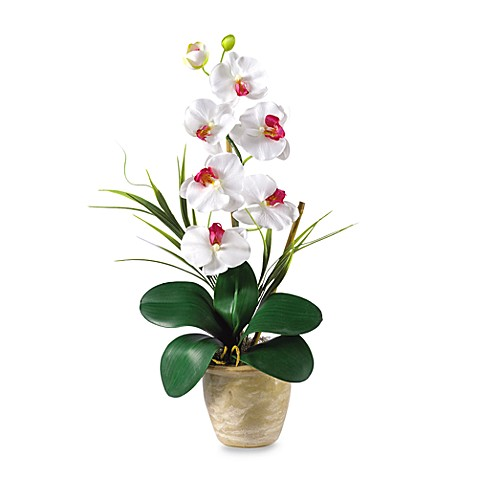 Nearly Natural Phalaenopsis Orchid Silk Flower Arrangement (White)