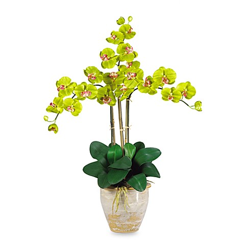 Nearly Natural Triple Phalaenopsis Orchid Silk Flower Arrangement in Green