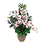 Nearly Natural Double Phalaenopsis & Dendrobium Silk Flower Arrangement in White