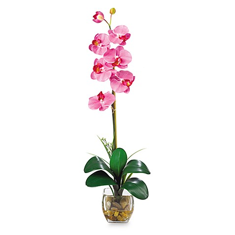 Nearly Natural Single Phalaenopsis Liquid Illusion Silk Flower Arrangement in Dark Pink