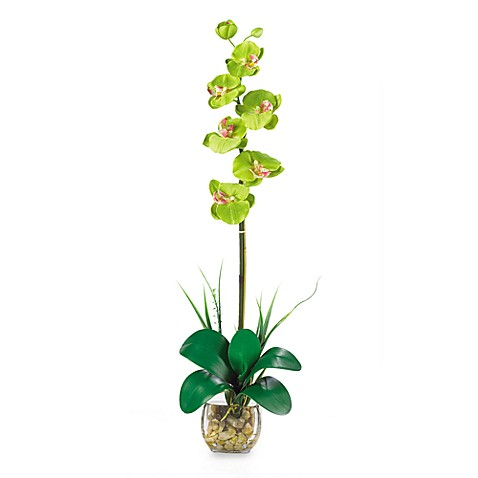 Nearly Natural Single Phalaenopsis Liquid Illusion Silk Flower Arrangement in Green