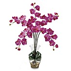 Nearly Natural Phalaenopsis Liquid Illusion Silk Flower Arrangement in Dark Pink