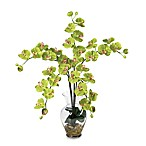 Nearly Natural Phalaenopsis Liquid Illusion Silk Flower Arrangement in Green