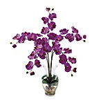 Nearly Natural Phalaenopsis Liquid Illusion Silk Flower Arrangement in Orchid