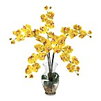 Nearly Natural Phalaenopsis Liquid Illusion Silk Flower Arrangement in Yellow