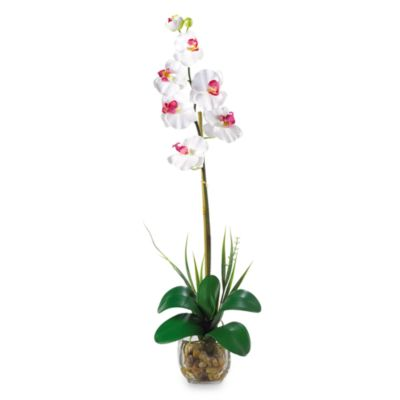 Nearly Natural Single Phalaenopsis Liquid Illusion Silk Flower Arrangement in White