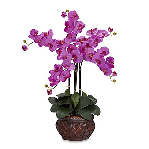 Nearly Natural Phalaenopsis Silk Flower Arrangement with Decorative Vase (Orchid)