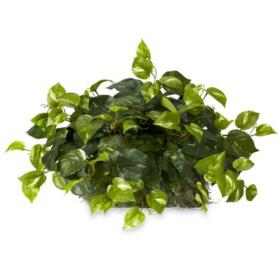 Nearly Natural Pothos Silk Ledge Plant