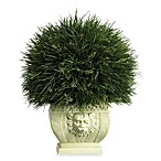 Nearly Natural Potted Grass with White Vase