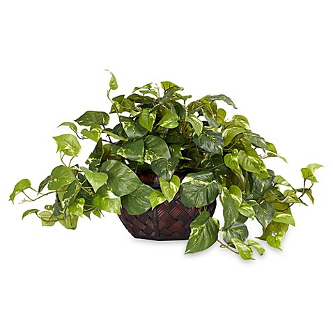 Nearly Natural Pothos w/ Decorative Vase Silk Plant