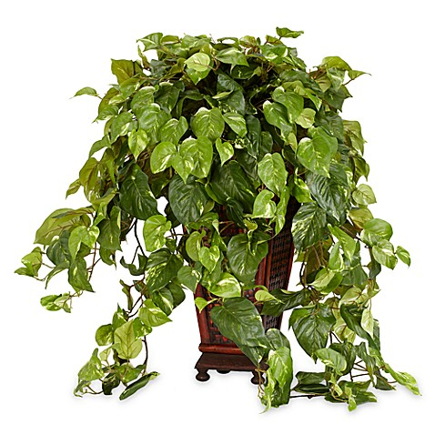 Nearly Natural Vining Pothos in Decorative Vase Silk Plant