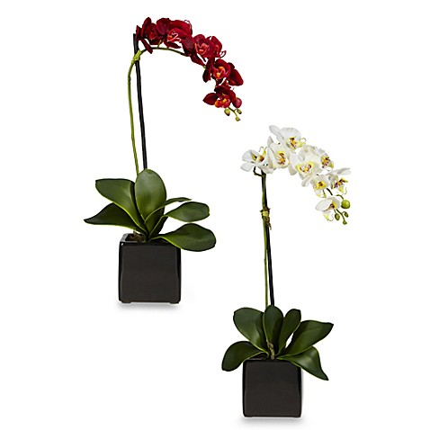 Nearly Natural Phaleanopsis Orchid w/Black Vase Silk Arrangement (Set of 2)