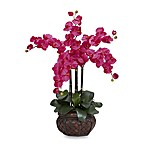 Nearly Natural Phalaenopsis w/ Decorative Vase Silk Flower Arrangement in Beauty