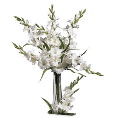 Nearly Natural Silk 36-Inch White Gladiola Stems (Set of 12)