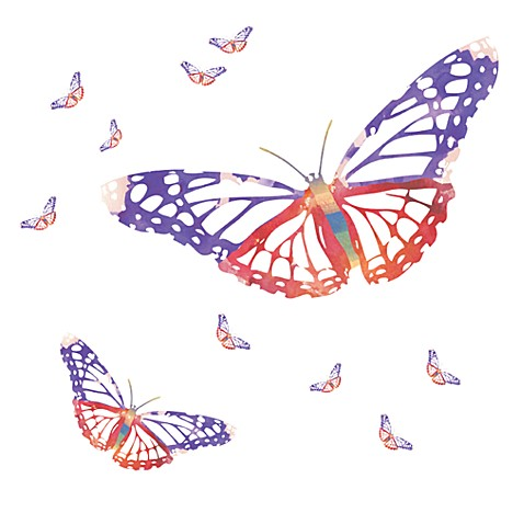Butterfly Vinyl Wall Decal Set