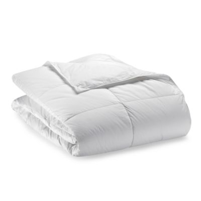 Robin Wilson Home Allergy-Free Year Round Warmth Down Alternative Full/Queen Comforter