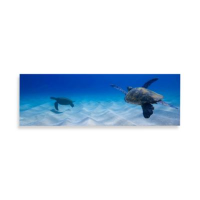 Two Turtles Canvas Print 58-Inch x 18-Inch Wall Art
