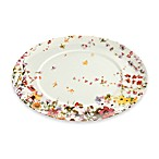 Mikasa® Sunset Valley 14-Inch Oval Platter
