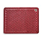 Dr. Doormat Antimicrobial Treated Doormat in Red