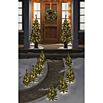 Christmas Tree 12-Piece Combo Pack