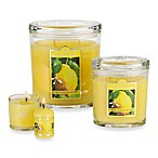 Colonial Candle® Fresh Summer Lemon Scented Candles