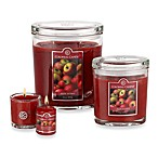 Colonial Candle® Apple Orchard Scented Candles