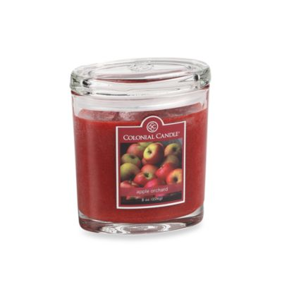 Colonial Candle® Apple Orchard Scented Candle in 8-Ounce Oval Jar Candle