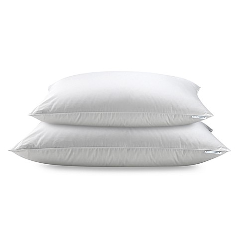 Real Simple® 100% Cotton White Down Pillow