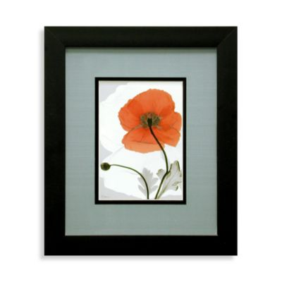 X-Ray Red Floral Wall Art IV