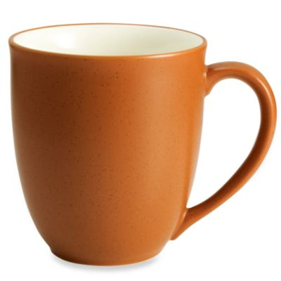 Noritake® Colorwave Mug in Terra Cotta